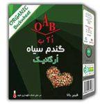 گندم سیاه ارگانیک OAB