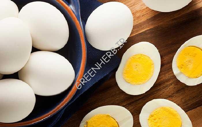 پودر سفیده تخم مرغ از تاریخچه تا خواص