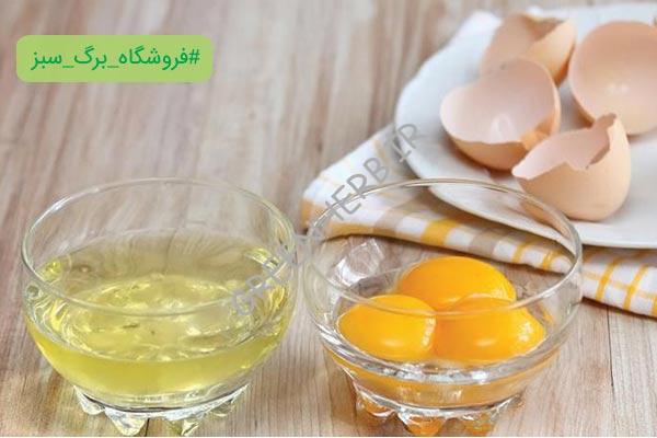 فواید سفیده تخمه مرغ 10 خواص بی نظیر  آن برای سلامتی پوست و مو