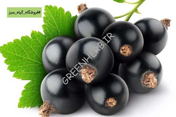 مکمل گیاهی برای لاغری: گوجی بری سیاه