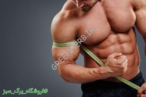 غذا برای عضله سازی