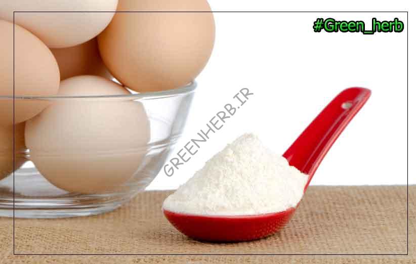پودر سفیده تخم مرغ آلمانی : 5 خاصیت فوق العاده برای بدن سازی!