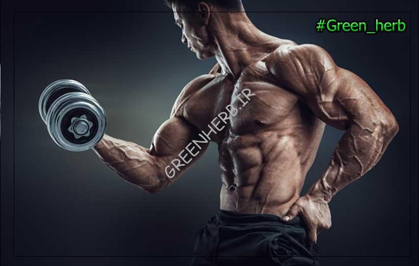 مکمل برای عضله سازی