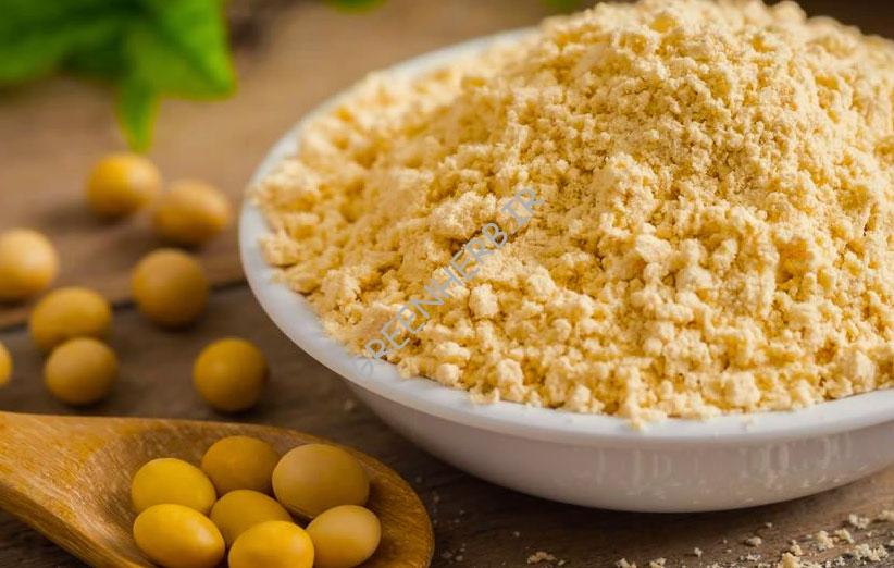خواص پودر ایزوله سویا : نکات مهم در تغذیه باید بدانید!