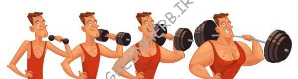 عضله سازی