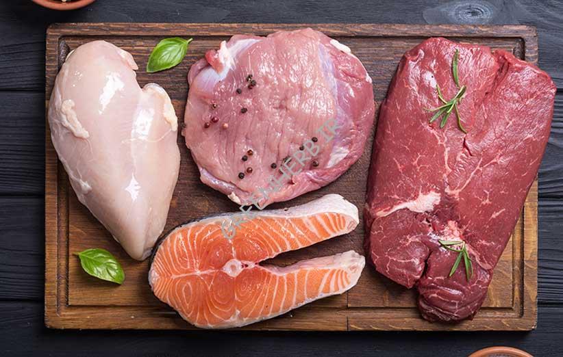 پروتئین حیوانی : منابع خوب برای بدنسازان