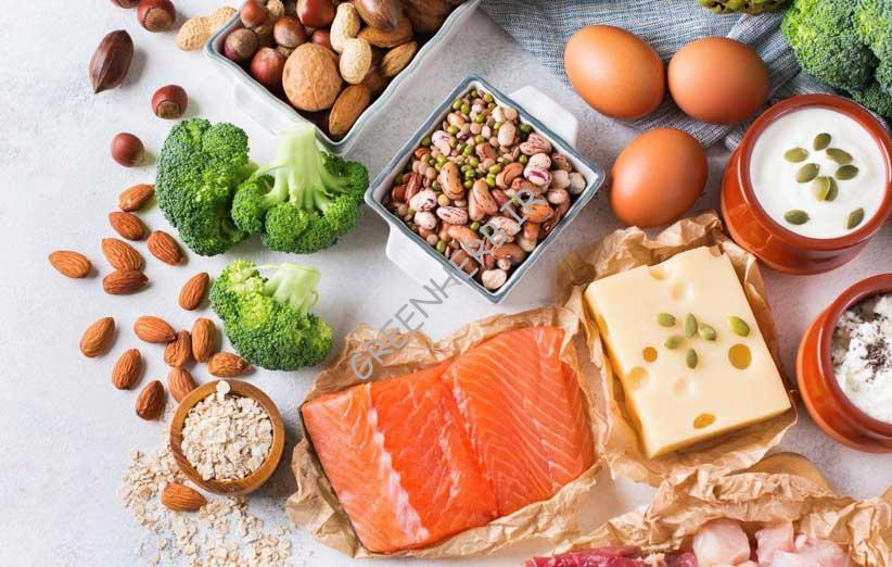 پروتئین و سلامتی