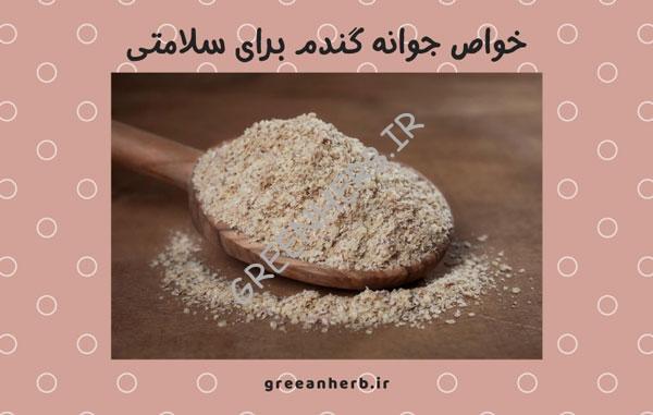 خواص جوانه گندم برای سلامتی