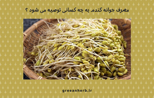مصرف جوانه گندم به چه کسانی توصیه می شود ؟