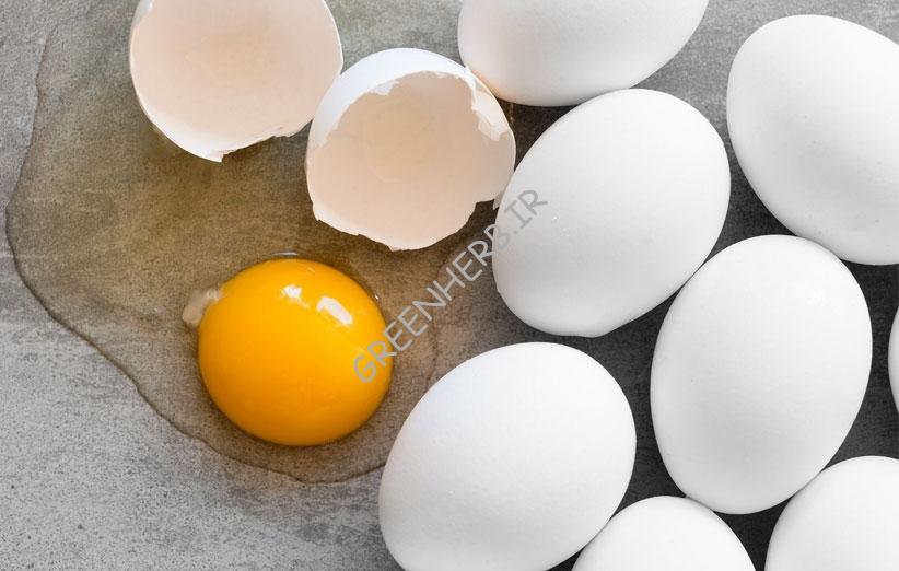 سفیده ی تخم مرغ و بدنسازی